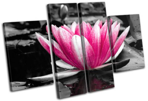 Water Lily Flowers Floral - 13-1274(00B)-MP17-LO